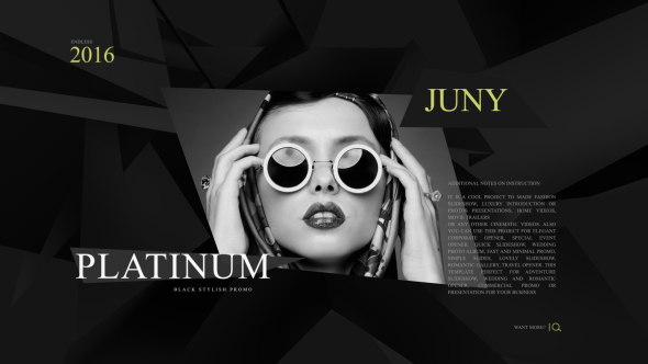 Platinum Fashion Promo 590x332 v02