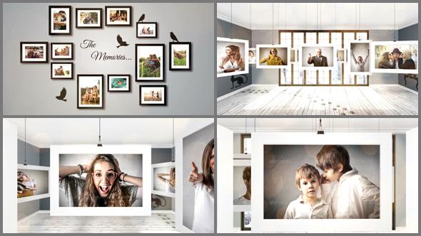 poho-gallery-590x332